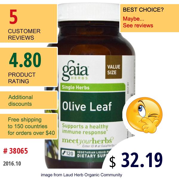 Gaia Herbs, Olive Leaf, 120 Veggie Liquid Phyto-Caps
