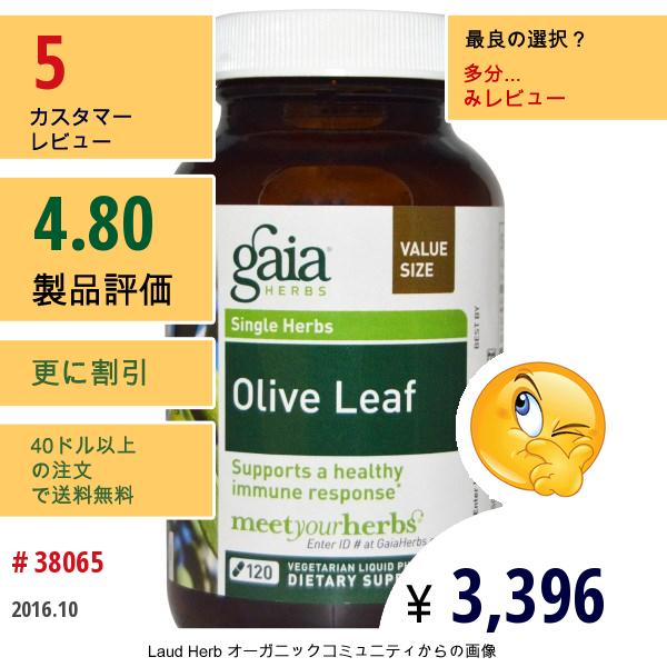 Gaia Herbs, オリーブの葉、120 ベジタリアンに適応した液体植物性カプセル