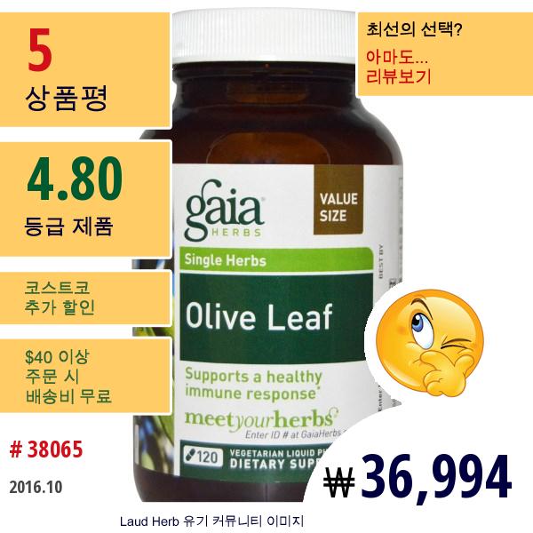 Gaia Herbs, 올리브 리프, 120 베지 리퀴드 피토-캡스