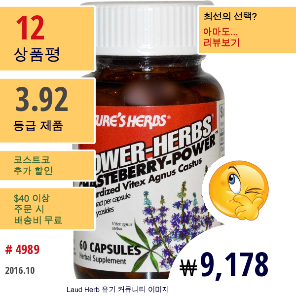 Natures Herbs, 파워-허브, 체이스트베리-파워, 60 캡슐
