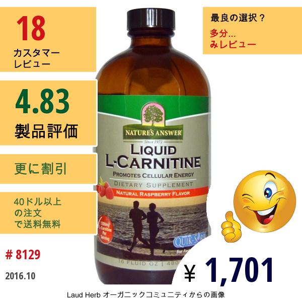 Natures Answer, 液体 L-カルニチン、 自然なラズベリーフレーバー、 16液量オンス (480 Ml)
