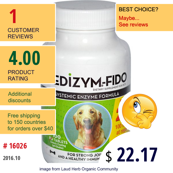 Naturally Vitamins, Medizym-Fido, Systemic Enzyme Formula, 100 Tablets