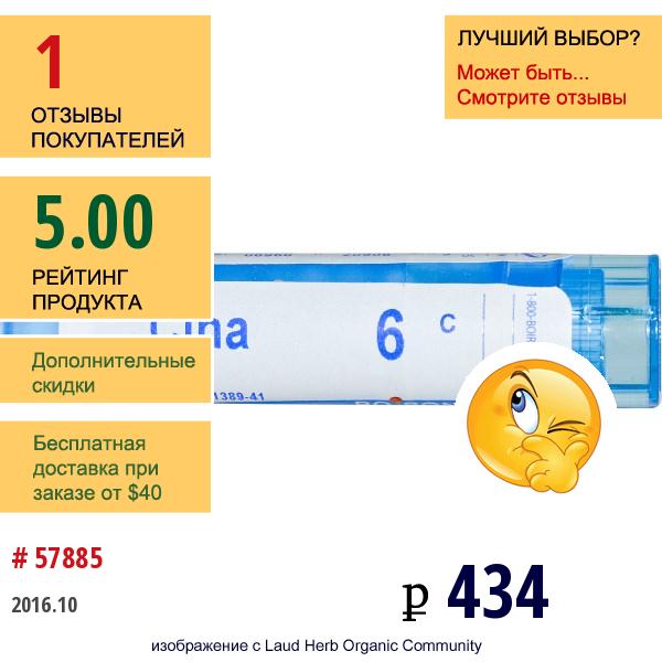 Boiron, Single Remedies, Полынь Цитварная, 6C, Прибл. 80 Гранул