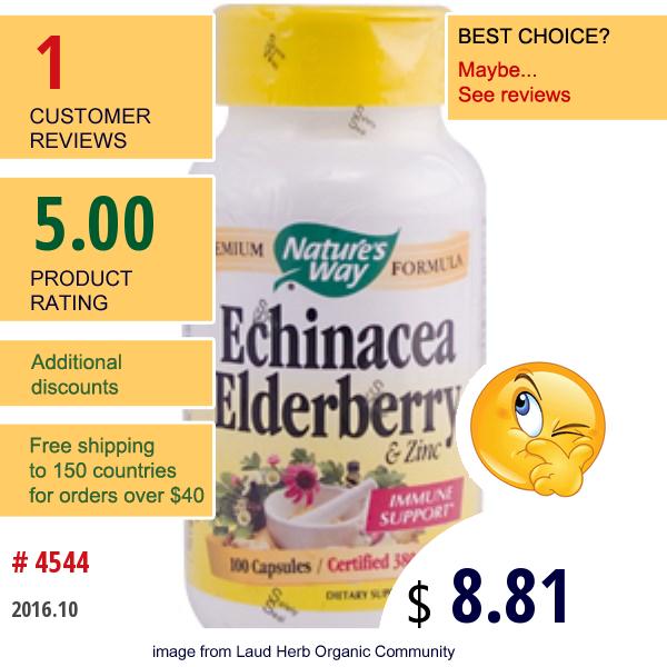 Natures Way, Echinacea Elderberry & Zinc, 380 Mg, 100 Capsules